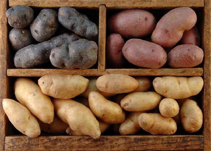 Выбор и подготовка картофеля